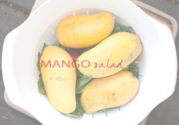 MANGO_salad_CRAFTEAHEART